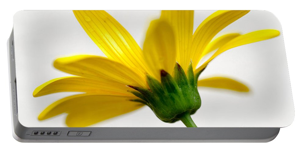 Yellow Daisy Portable Battery Charger featuring the photograph Buttercup by Deb Halloran