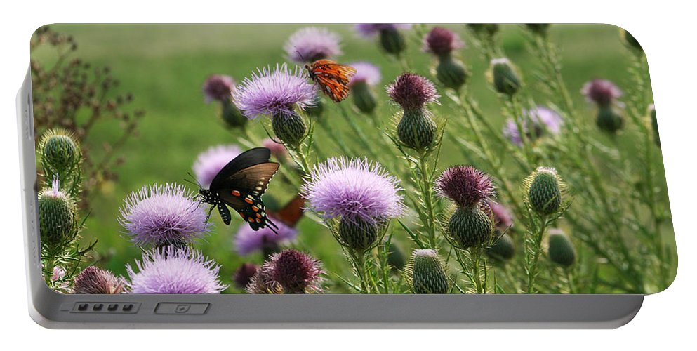 Cirsium Vulgare Portable Battery Charger featuring the photograph Butterflies And Bull Thistle Wildflowers by Kathy Clark