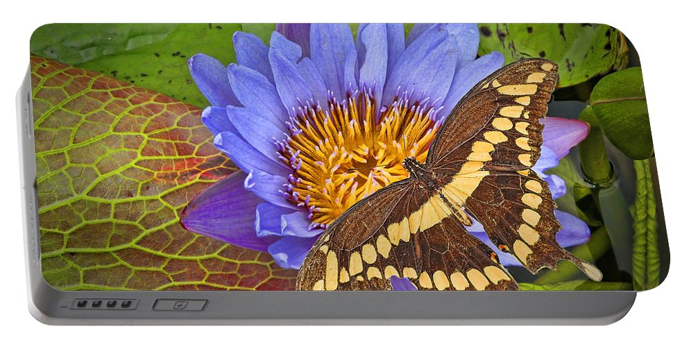 Giant Portable Battery Charger featuring the photograph Butterfly And Lily by Rudy Umans