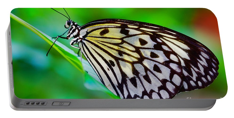 Colorful Portable Battery Charger featuring the photograph Butterfly On A Leaf by Nick Biemans