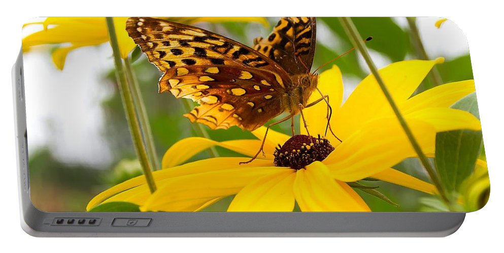 Butterfly Portable Battery Charger featuring the photograph Butterfly On Blackeyed Susan by Nikki Vig