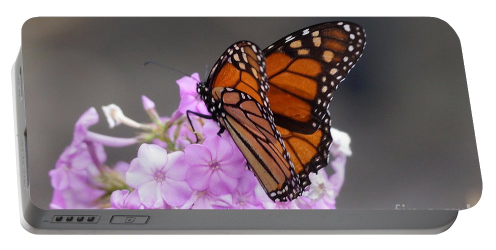 Butterfly Portable Battery Charger featuring the photograph Butterfly On Phlox by Lori Tordsen