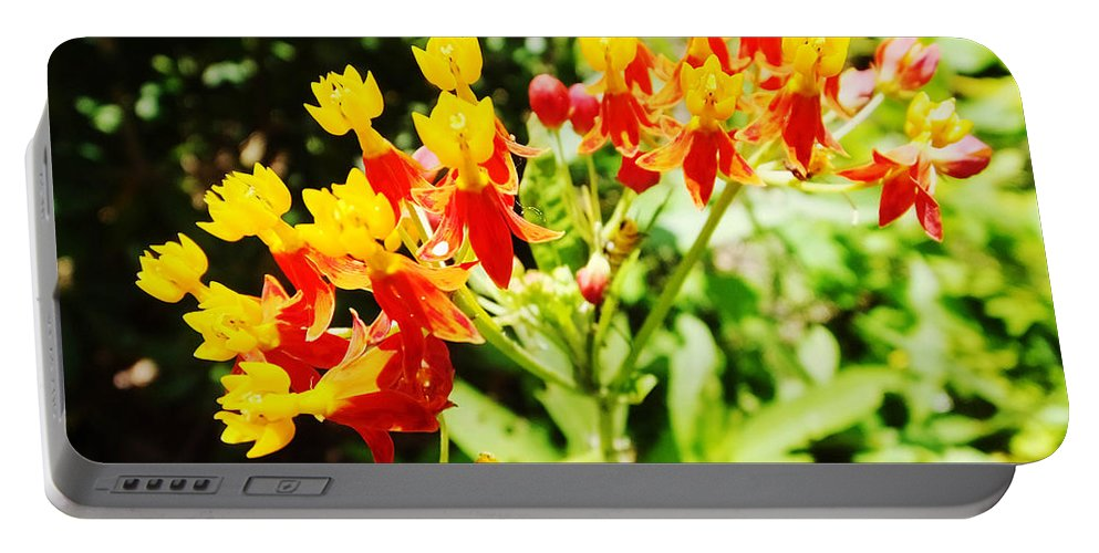 Flower Portable Battery Charger featuring the photograph Butterfly Weed 2 by Lizi Beard-Ward