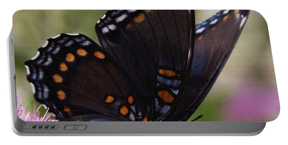 Butterfly Portable Battery Charger featuring the photograph Butterfly Wings by James C Thomas