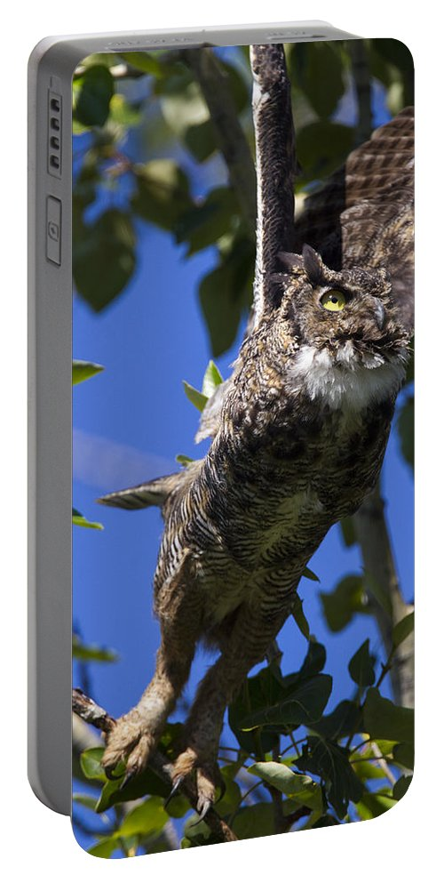 Doug Lloyd Portable Battery Charger featuring the photograph Bye by Doug Lloyd
