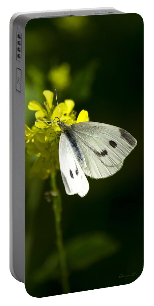 Cabbage White Butterfly Portable Battery Charger featuring the photograph Cabbage White Butterfly On Yellow Flower by Christina Rollo