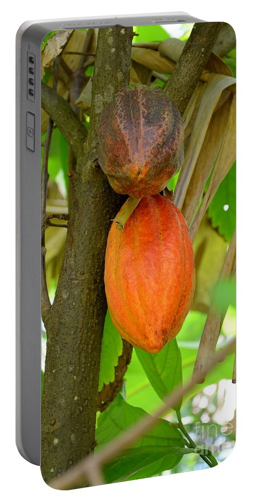 Allerton Gardens Portable Battery Charger featuring the photograph Cacao by Mary Deal