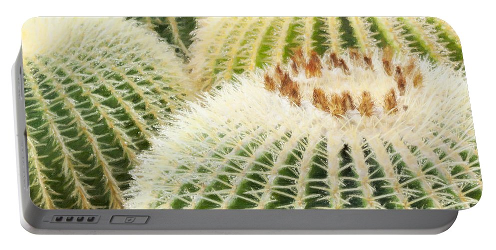 Floral Portable Battery Charger featuring the photograph Cacti by Julie Woodhouse