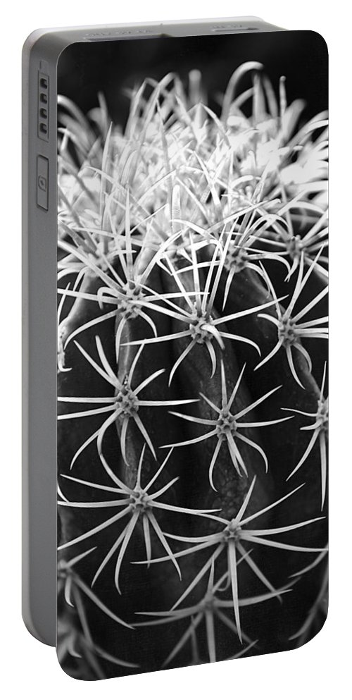 Cactus Portable Battery Charger featuring the photograph Cactus Thorn Pattern by Phyllis Denton