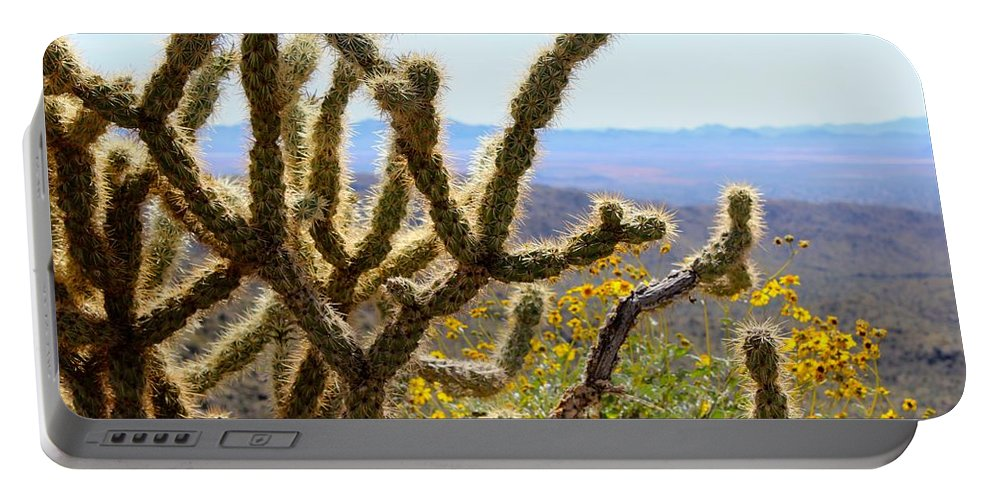 Cactus Portable Battery Charger featuring the photograph Cactus View by Tiffany Erdman