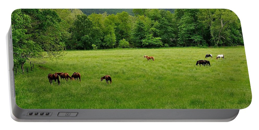 Cades Cove Portable Battery Charger featuring the photograph Cades Cove Horses by Todd Hostetter