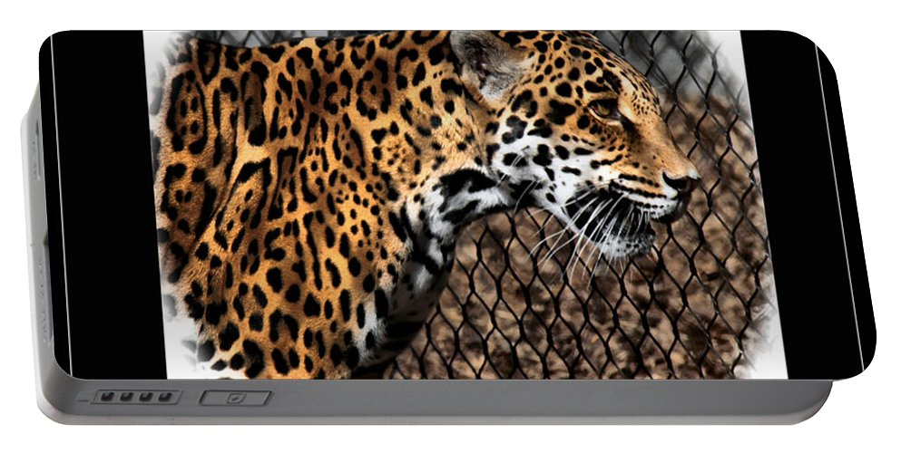 Jaguar Portable Battery Charger featuring the photograph Caged Jaguar by Lucy VanSwearingen