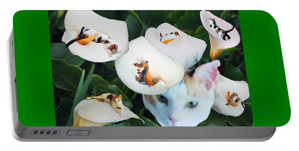 Cat Portable Battery Charger featuring the digital art Cala In Callas by Lisa Yount