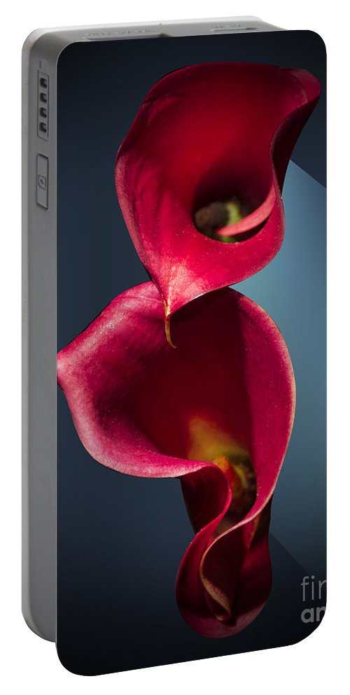 Cala Lily Portable Battery Charger featuring the photograph Cala Lily by Mark Ashkenazi