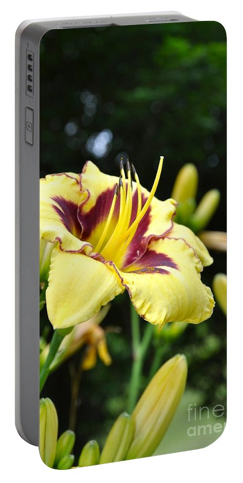 Lily Portable Battery Charger featuring the photograph Call To The Sun by Christina McKinney