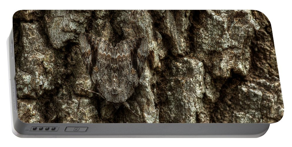 Moth Portable Battery Charger featuring the photograph Camo Moth by Jonathan Davison