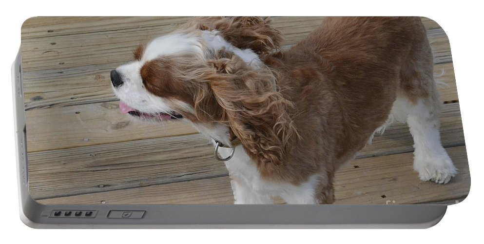 Rivers Portable Battery Charger featuring the photograph Can You Feel The Sea Breeze by Dale Powell