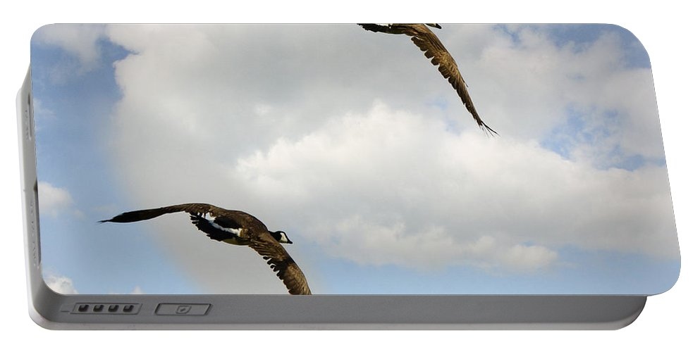 Canadian Geese Portable Battery Charger featuring the photograph Canada Geese by Saija Lehtonen