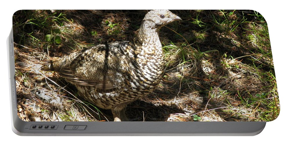 Canada Grouse Portable Battery Charger featuring the photograph Canada Grouse by Lena Photo Art