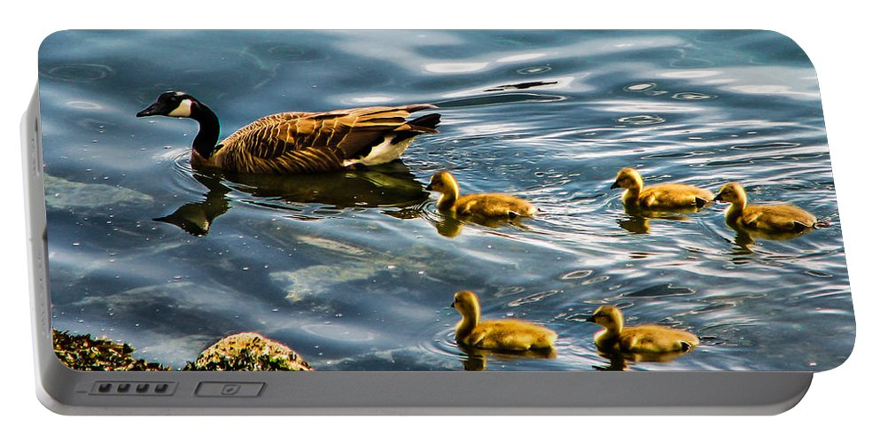 Gesse Portable Battery Charger featuring the photograph Canadian Goose And Goslings by Robert Bales