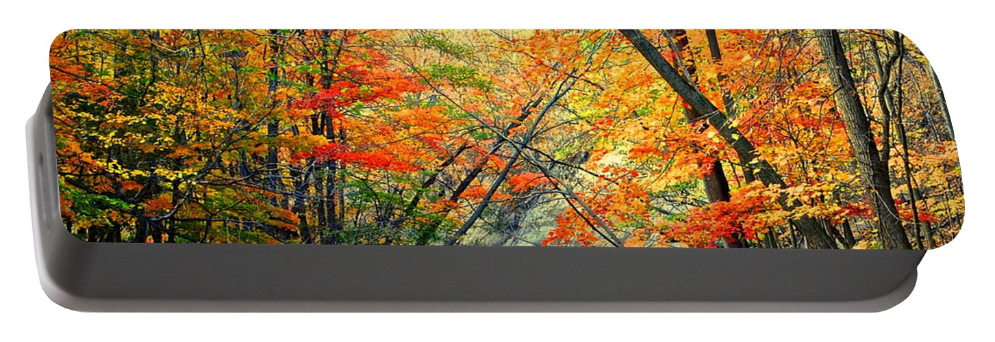 Color Portable Battery Charger featuring the photograph Canopy Of Color II by Frozen in Time Fine Art Photography