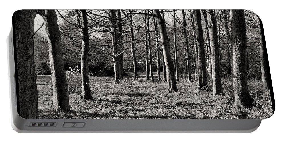 Rivington Portable Battery Charger featuring the photograph Can't See The Wood For The Trees by Gillian Singleton