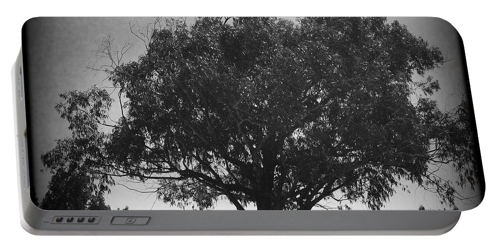 Car Parked Under A Tree Portable Battery Charger featuring the photograph Car Parked Under A Tree by Marco Oliveira