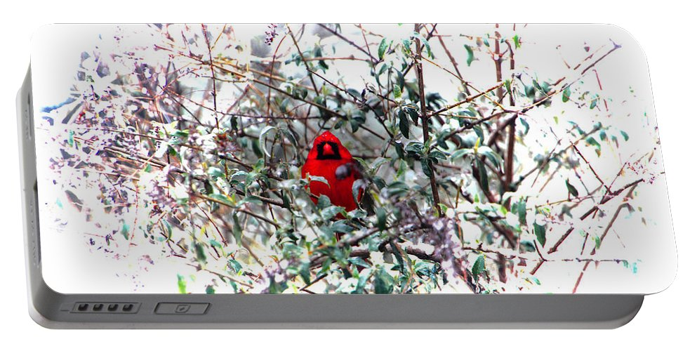 Cardinal Portable Battery Charger featuring the photograph Cardinal Stare by Ericamaxine Price