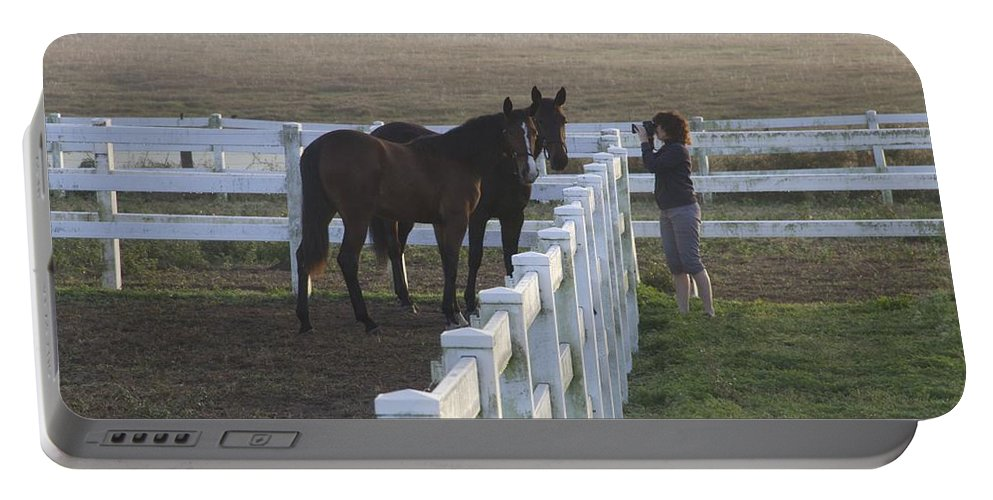 Horses Portable Battery Charger featuring the photograph Caro And Her Horses by Alice Gipson