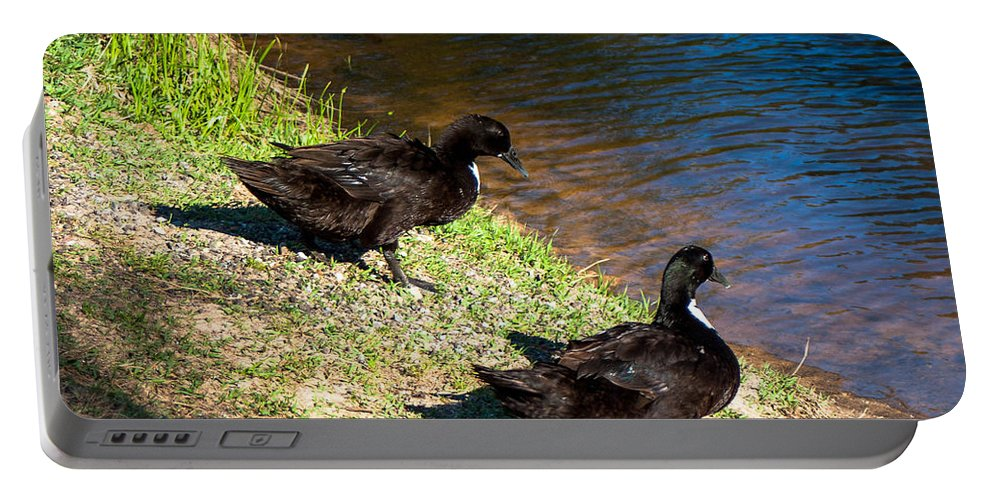 Carpenters Park Portable Battery Charger featuring the photograph Carpenters Park-ducks by Mechala Matthews