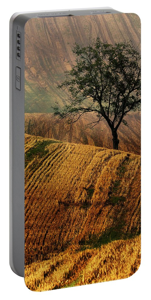 Landscape Portable Battery Charger featuring the photograph Carpet Fields Of Moravia by Jaroslaw Blaminsky