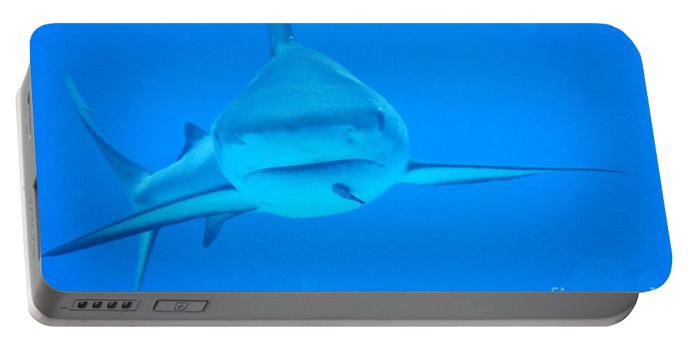 Sharks Portable Battery Charger featuring the photograph Carribean Reef Shark Seeks Dinner by John Malone