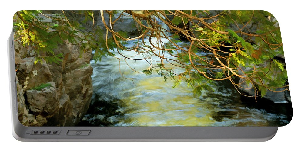 Cascade River Portable Battery Charger featuring the photograph Cascade Cedar by Bill Morgenstern