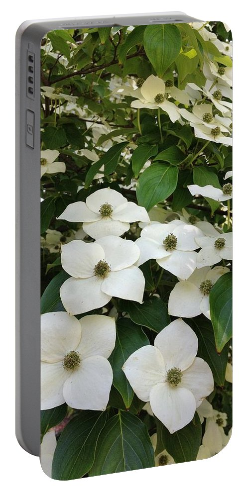 Flowers Portable Battery Charger featuring the photograph Cascade by Jean Goodwin Brooks