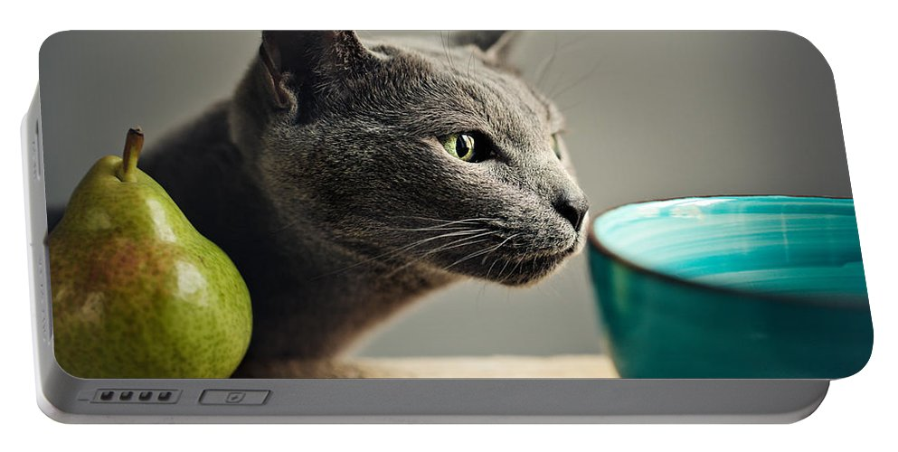 Cat Portable Battery Charger featuring the photograph Cat and Pears by Nailia Schwarz