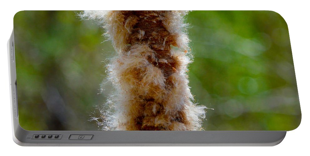 Fuzz Portable Battery Charger featuring the photograph Cat Tail Fuzz by Brent Dolliver