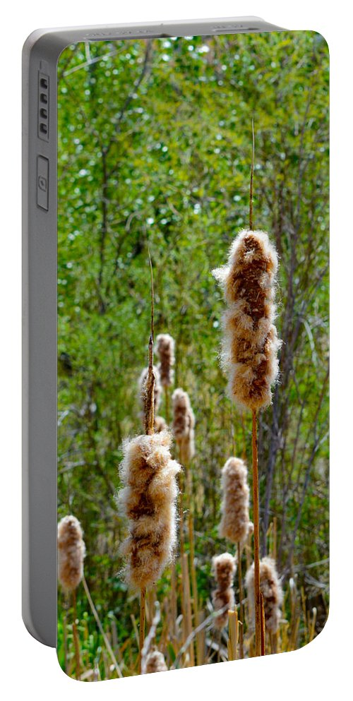 Fuzz Portable Battery Charger featuring the photograph Cat Tails by Brent Dolliver