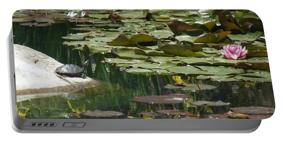 Turtle Portable Battery Charger featuring the photograph Catching Some Sun 1 by Jennifer Lavigne