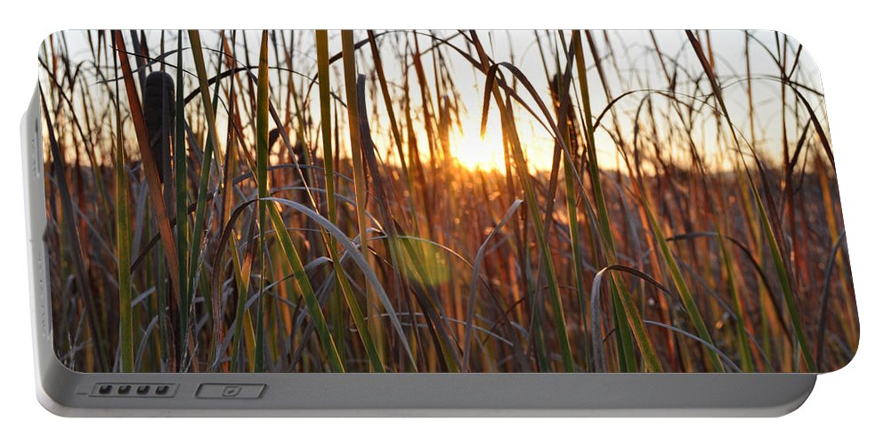 Outdoors Portable Battery Charger featuring the photograph Cattails And Reeds - West Virginia by Paulette B Wright