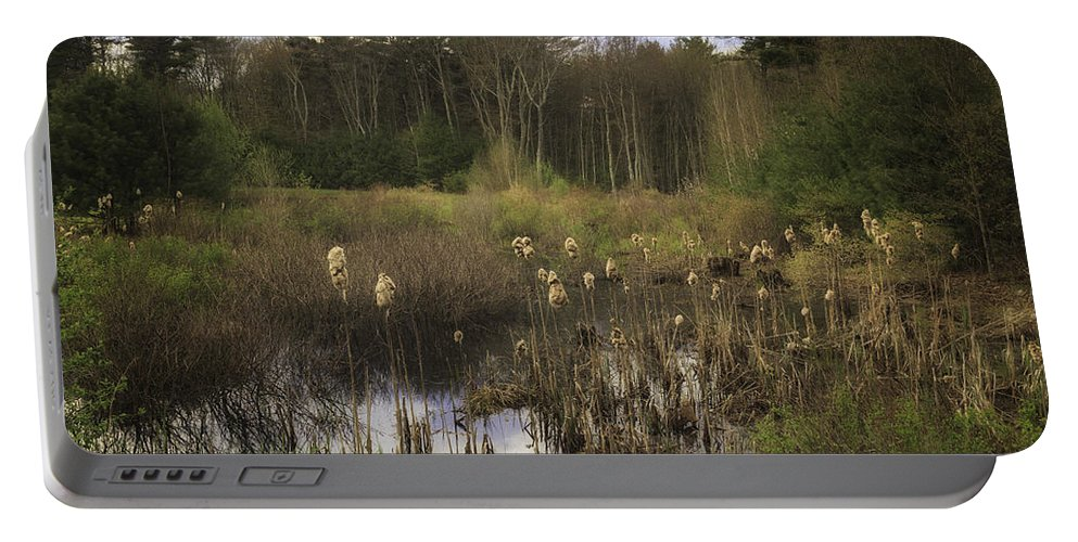 Cattails Portable Battery Charger featuring the photograph Cattails by Fran Gallogly