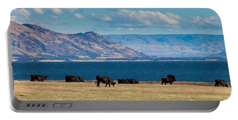 South Island Portable Battery Charger featuring the photograph Cattle Grazing At Hawea Lake In Southern Alps In New Zealand by Stephan Pietzko