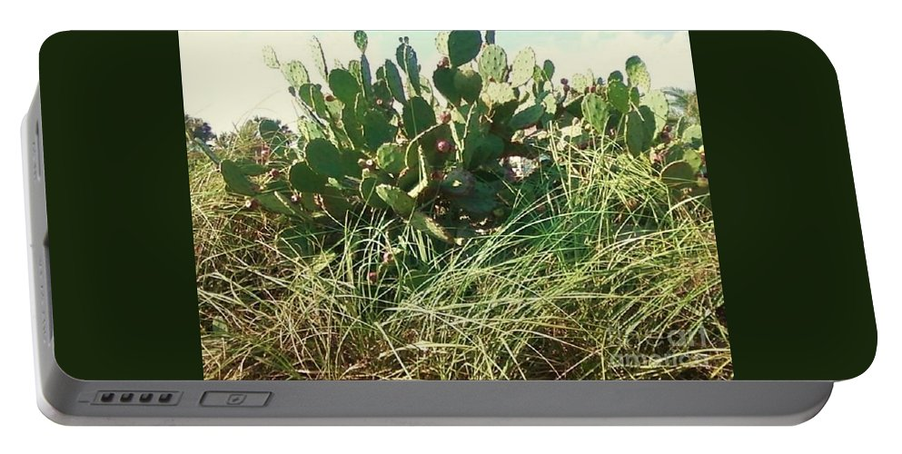 Catus Portable Battery Charger featuring the photograph Catus 1 by Michelle Powell