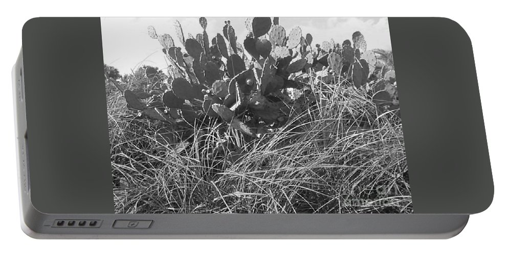 Catus Portable Battery Charger featuring the photograph Catus 2 by Michelle Powell