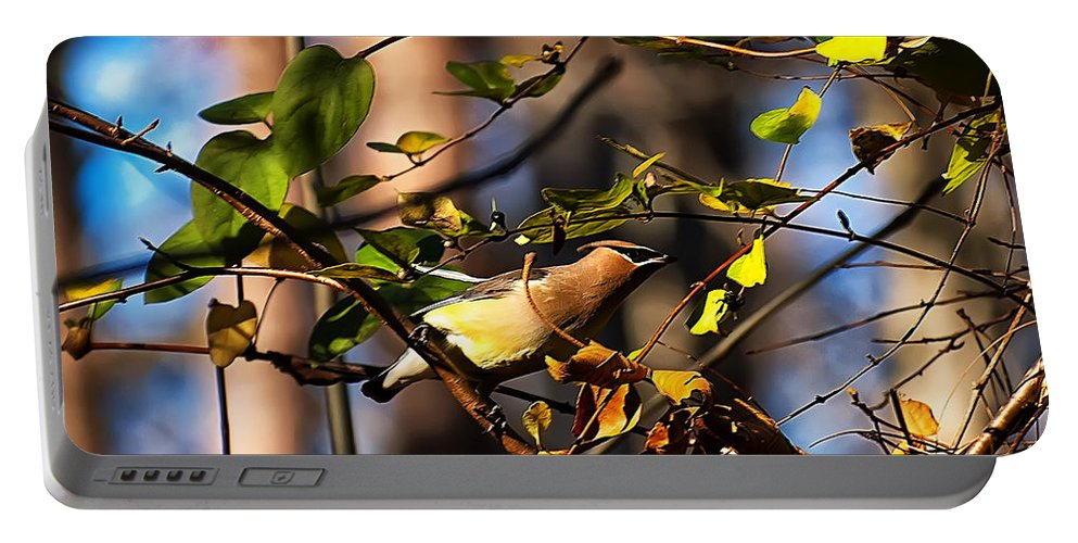 Bird Portable Battery Charger featuring the photograph Cedar Waxwing Preparing To Fly by Chris Flees