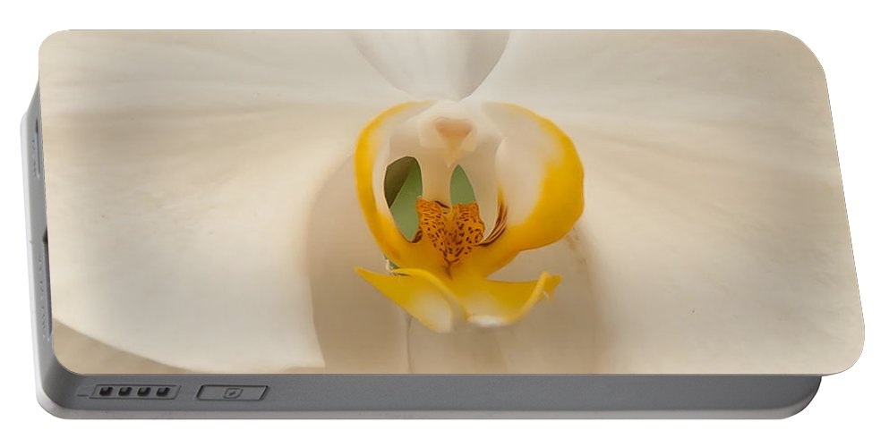 Orchid Portable Battery Charger featuring the photograph Center Of Attention by Dee Dee Whittle