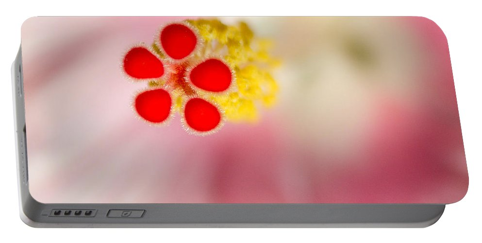Hibiscus Portable Battery Charger featuring the photograph Center Of Attention by Georgette Grossman