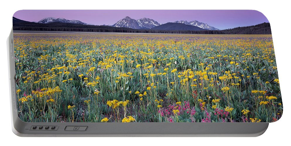 Beautiful Portable Battery Charger featuring the photograph Central Idaho Color by Leland D Howard