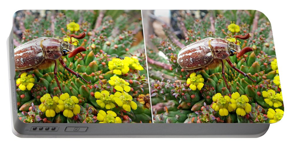 Duane Mccullough Portable Battery Charger featuring the photograph Chafer Beetle On Medusa Succulent In 3d Stereo by Duane McCullough
