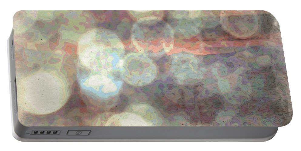 Raindrops (or Champagne Bubbles If You Prefer) Portable Battery Charger featuring the photograph Champagne Bubbles And Sunset by Phyllis Kaltenbach