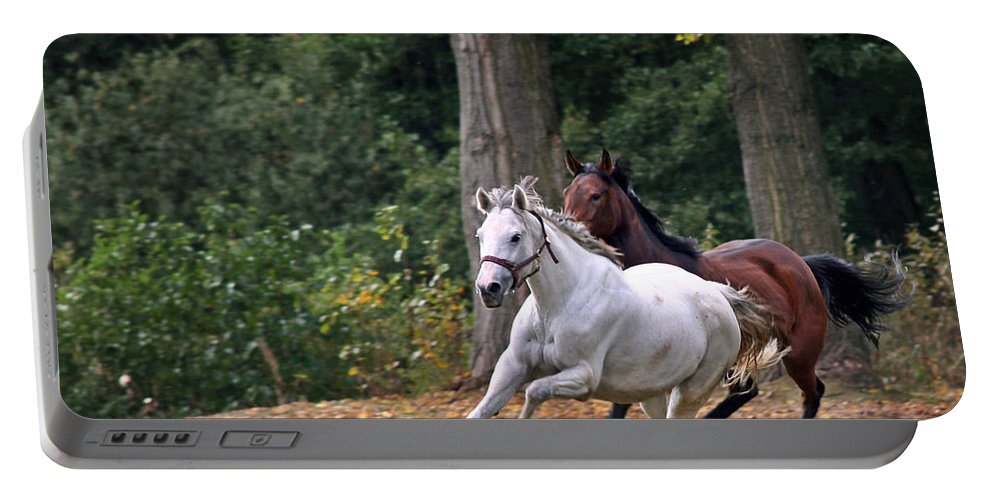 Horse Portable Battery Charger featuring the photograph Chasing The Wind by Angel Ciesniarska